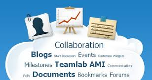 Customizing Collaborative Platforms