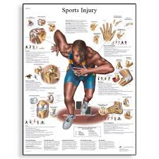 Various Types of Sports Injuries