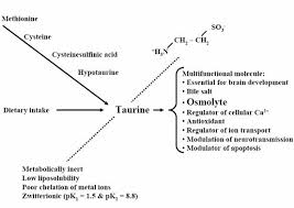 Side Effects of Taurine