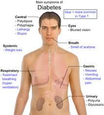 Define on Diabetes Life Expectancy