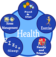 Discuss and Define on Health is Wealth