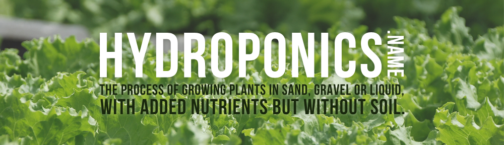 hydroponics essay There has been many debates as to which gardening method would between hydroponics vs aquaponics we'll be looking at the main differences between the two.