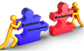 Define on Strategy and Business Development to Grow Business