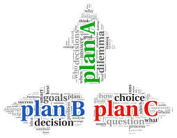 Describe Contingency Plan Strategy
