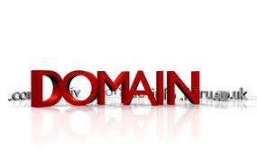 Some facts about the Local Domain Name