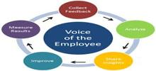 Significance of Employee Feedback Surveys