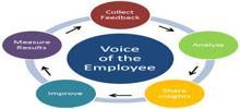 Significance of Employee Feedback Surveys