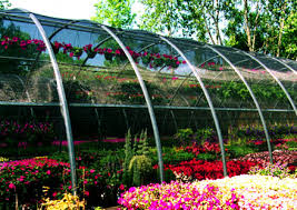 Define on Selling Flowers in a Greenhouse