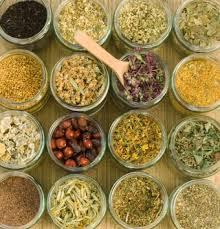 Different Kinds Of Natural Alternative Medicine