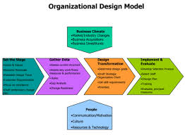 Define Organization Design