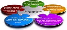 Value of Organizational Culture