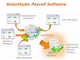 Insight the Perfect Payroll Software