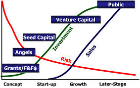 Getting the Risk Capital Investment