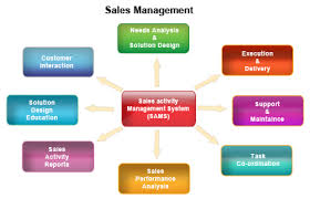 Vital Principles for Efficient Sales Management