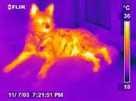 Define on Smart Thermal Cameras