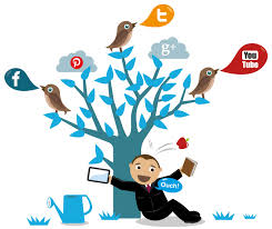 Advantages of Professional Social Marketing