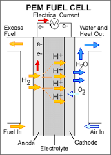 About Fuel Cell