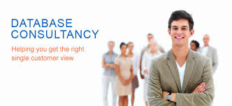 IT Consultant for Database Services
