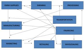 Basics of Restaurant Supply Store