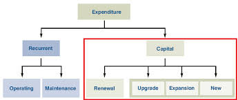 Productivity during Capital Expenditure