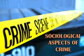Thesis Report on Crime Aspects