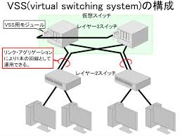 Virtual Switching System