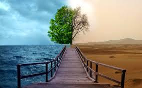 Activities of Dept of Environment