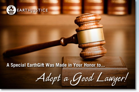 Finding on Good Lawyers in Richmond VA