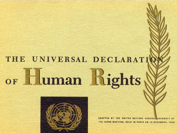 Domestic Application of International Human Rights Law