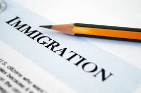 Define on Immigration Consultants