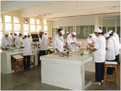 Inplant Training in Nuvista Pharma Limited