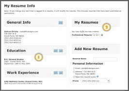 Describe Online Resumes