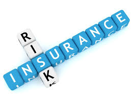 Insurance Risk Management