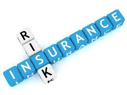 Insurance Risk Management