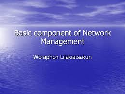 Components of Network Management