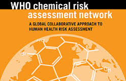 Network Risk Assessment