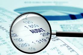 Economic Significance of the Audit