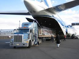 Air Freight Charter