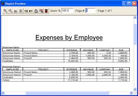 employee expense reports assignment point