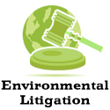Public Interest Environment Litigation