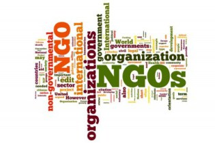 Development Process of NGO