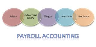 Payroll Accounting Service Provider