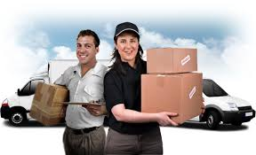 Professional Courier