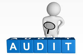 Telecom Audit Software