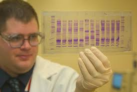 Discuss on DNA Profiling