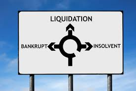 Insolvency Definition