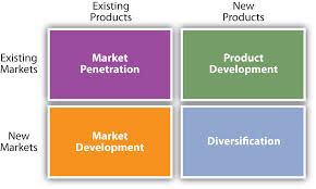 Marketing Objectives for New Product