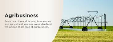Agribusiness research paper