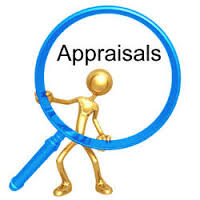 Limitation of the Performance Appraisal