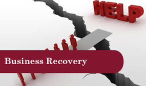 Business Recovery and Turnaround